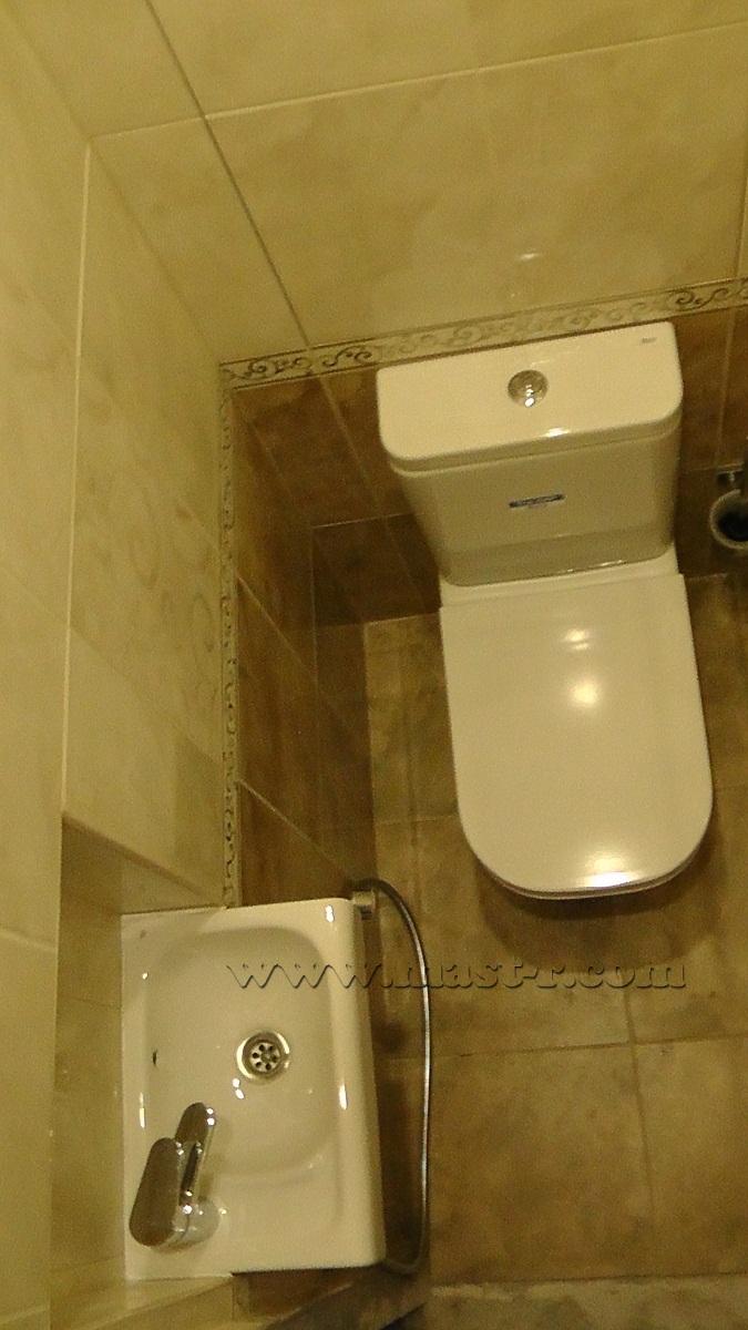 Фото туалета с гигиеническим душем и раковиной дизайн